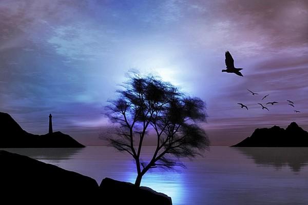 Un faro y aves al amanecer