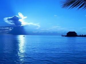 Junto al mar al amanecer