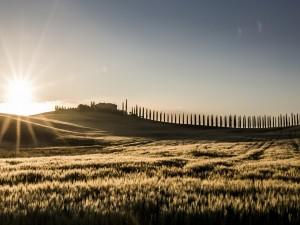 El sol naciente ilumina el paisaje