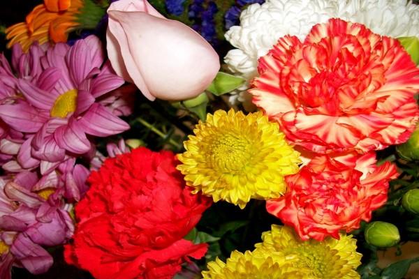 Un ramo de flores variadas