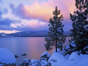 Nieve en la orilla del lago