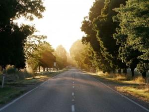 Rayos de sol en la carretera