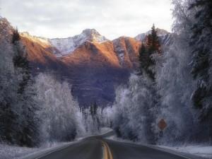 Postal: Carretera hacia las montañas