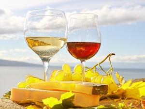 Copas de vino blanco y tinto acompañadas de queso y uvas