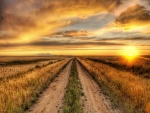 En el camino admirando el atardecer