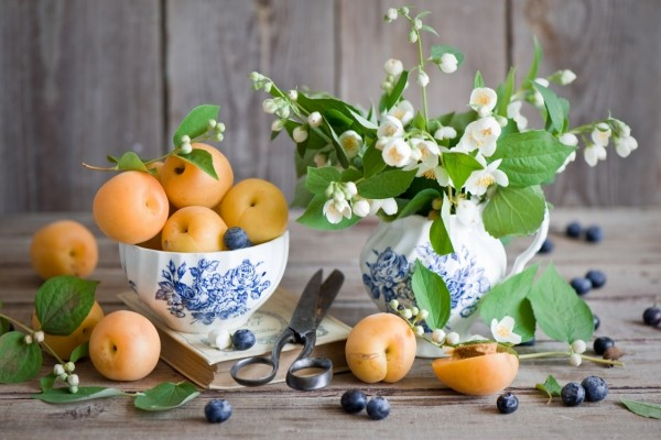 Albaricoques y flores de jazmín