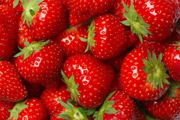 Rojas y brillantes fresas