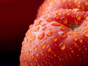 Postal: Tomates con gotas de agua