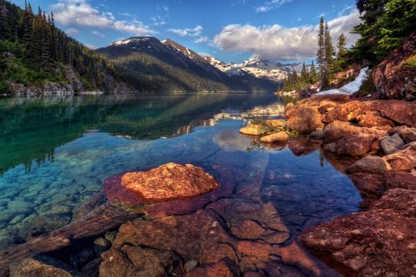 Un río de agua clara