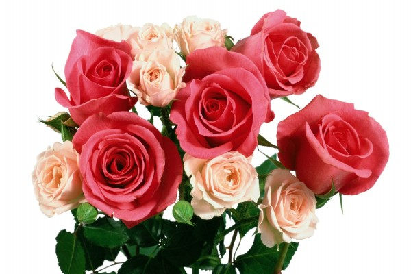 Ramo con rosas de dos tamaños