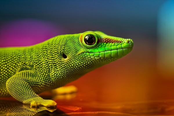 Cabeza de un lagarto