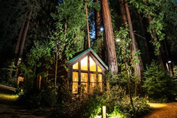 Cabaña iluminada en el bosque