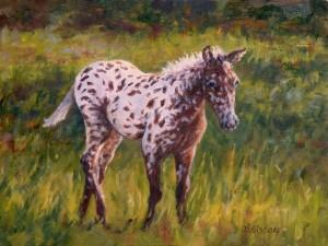 Postal: Un joven caballo en el prado