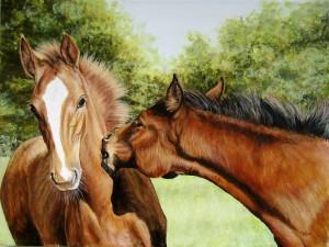 Bonito cuadro con dos caballos