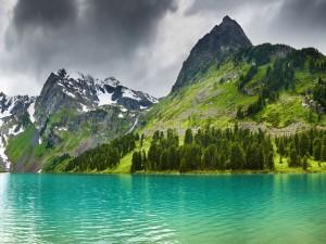 Postal: Montañas verdes junto al lago