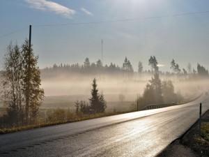 Postal: Niebla cerca de la carretera