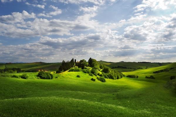 Casas en un entorno verde y natural