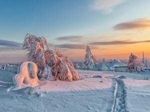 Postal: Naturaleza cubierta de nieve