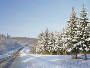 Una solitaria carretera helada
