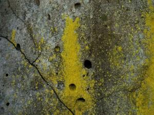 Postal: Agujeros y grietas en la roca