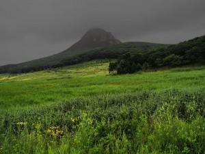 Postal: Nubes grises sobre el campo verde