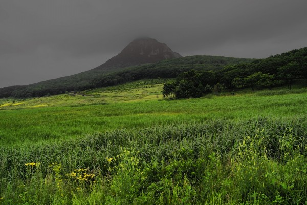 Nubes grises sobre el campo verde