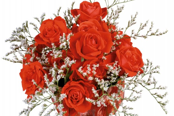 Ramo con rosas rojas y unas pequeñas flores blancas