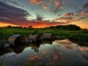 Tres tubos en un entorno natural
