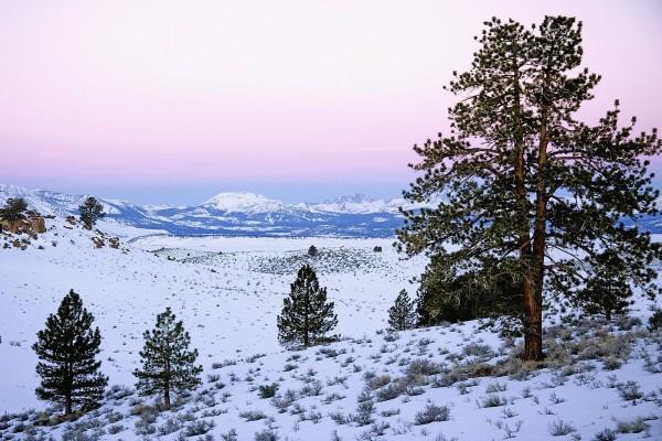 Nieve en un entorno natural
