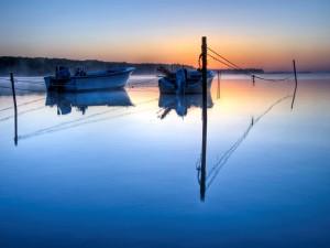 Postal: Dos barcas amarradas en el lago