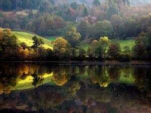 Casa entre los árboles reflejada en el lago