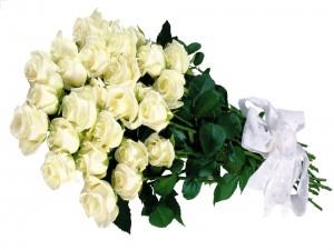 Postal: Ramo de rosas blancas con un lazo blanco