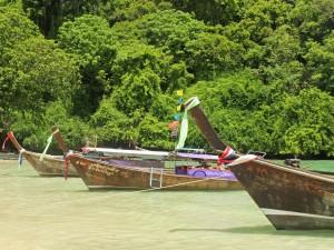 Postal: Barcos de pesca en una zona tropical