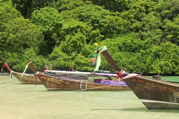 Barcos de pesca en una zona tropical