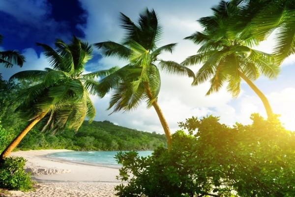 Playa y vegetación en la isla de Mahe