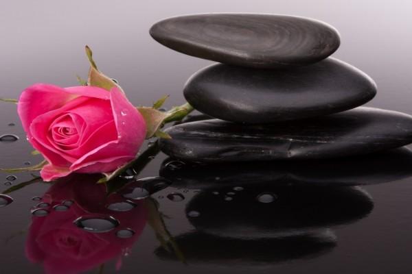 Guijarros negros y un perfumado pimpollo rosa