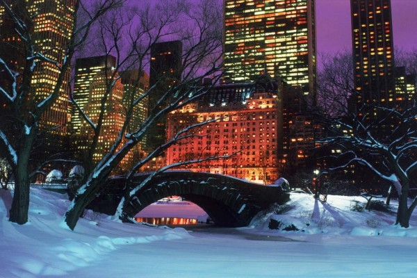 Noche en el parque nevado de la ciudad
