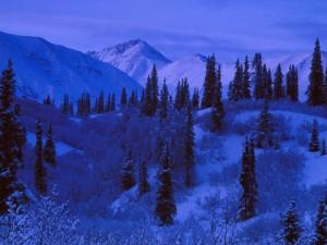 Paisaje nevado al anochecer