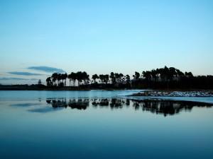 Viento y nieve en la orilla del lago