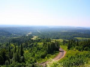 Postal: Carretera entre la naturaleza
