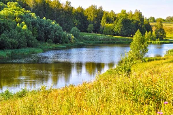 El río Amarillo en la naturaleza