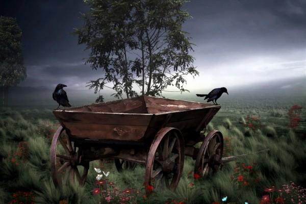 Dos cuervos posados en un carro