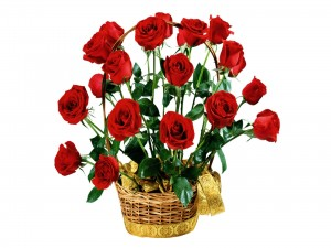 Postal: Rosas rojas para regalar