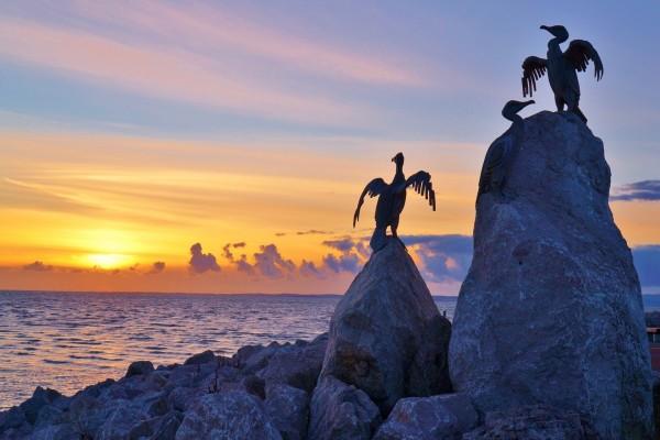Aves de piedra sobre las rocas junto al mar