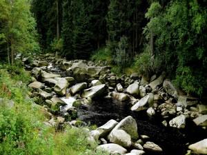 Varias y grandes piedras en el río