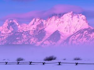 Postal: Montañas nevadas teñidas de un suave color rosa