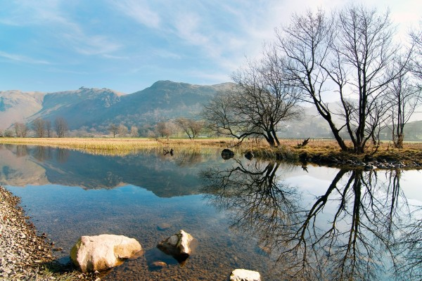 Árboles reflejados en el río