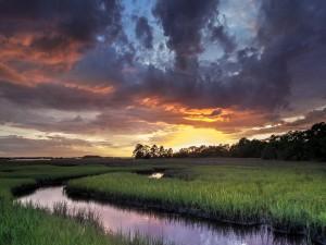 Un pequeño río entre la hierba visto al atardecer