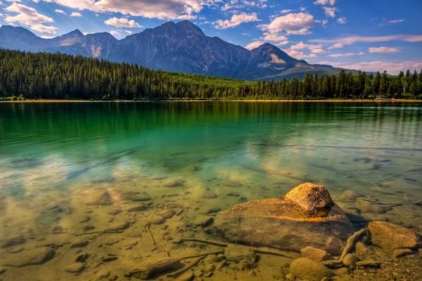 Lago, pinos y grandes montañas