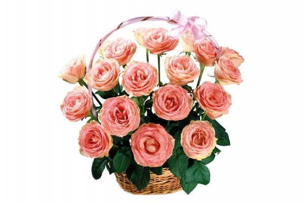 Cesta para regalar con unas hermosas rosas
